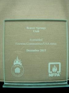 2015 Firewise Award